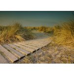 Boardwalk, Wittering sands, Sussex