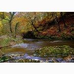 River Melte, Pontneddfechan